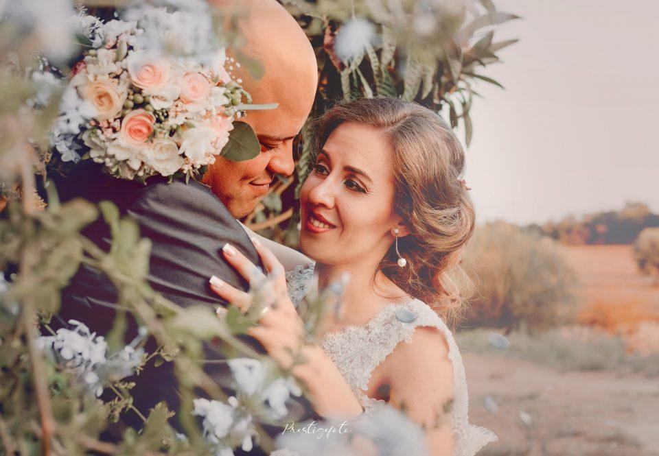 P&A – <b><i>Wedding</i></b>